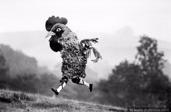 Morris dancer cockerel