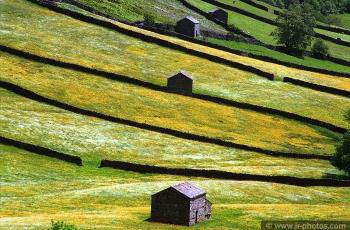 Barns and walls at Swaledale