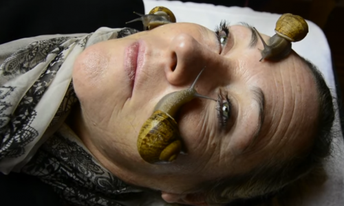 Snail Beauty Treatment