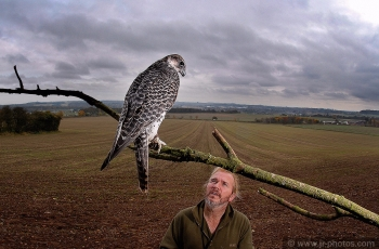 Falconer Bill Pinchers with Gyrfalcon